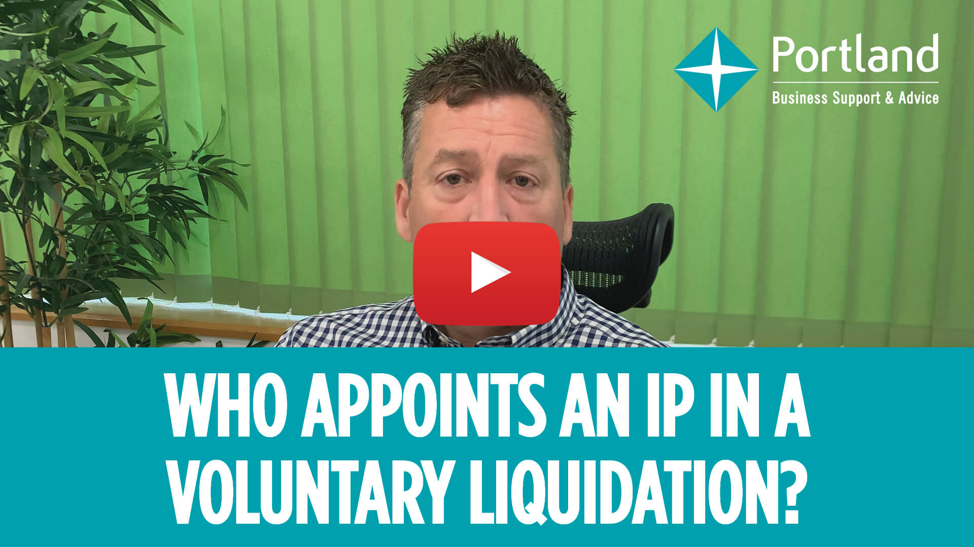 who appoints ip